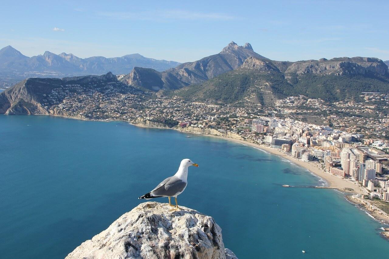 Landvetter Parkering | Här Är Varför Alicante Är Den Mest Besökta Turistorten